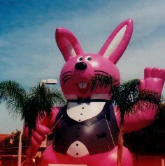 25ft. Bunny Advertising Inflatable