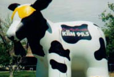 Move Business with a Giant Cow Balloon