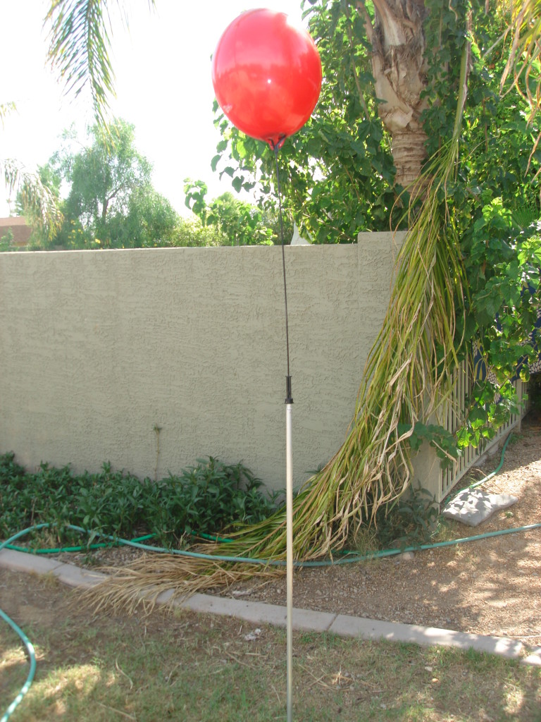 balloon bobber - reusable balloon on stick - permanent balloon